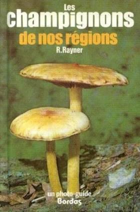 Les champignons de nos régions