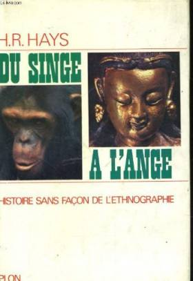 Du singe à l'ange, Histoire...