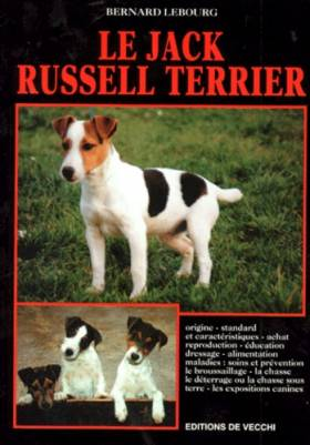Le jack russell-terrier