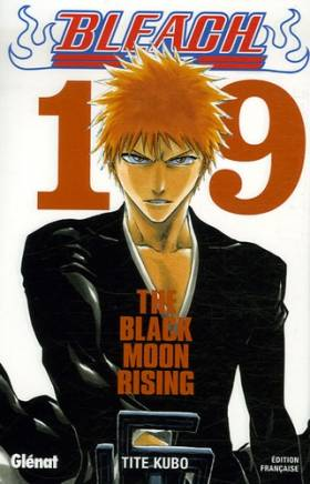 Bleach Vol.19