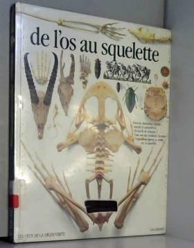 De l'os au squelette