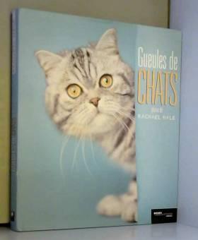 Gueules de chats