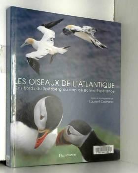 Les Oiseaux de l'atlantique...