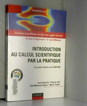 Ionut Danaila, Pascal Joly, Sidi Mahmoud Kaber... - Introduction au calcul scientifique par la pratique - 12 projets résolus avec Matlab
