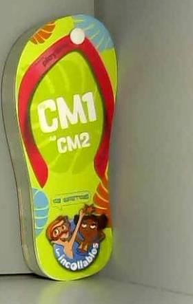 Incollables CM1 - Tong du...