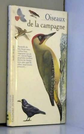 Oiseaux de la campagne