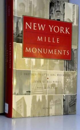 New York en 1000 monuments