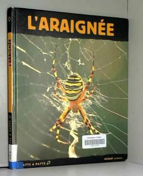 L'Araignée : Petite Fée de...