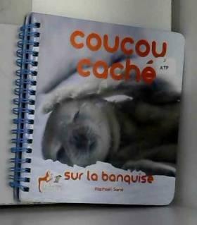 Raphël Sané - Coucou caché sur la banquise