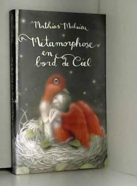 Mathias Malzieu - Métamorphose en bord de ciel