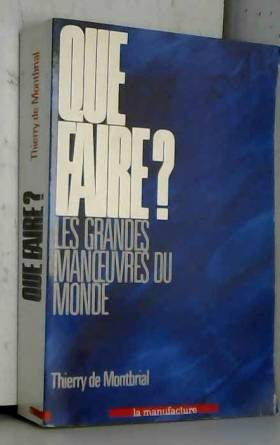 Thierry de Montbrial - Que faire?
