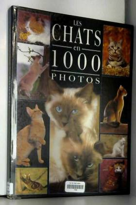 Coppe - Chats 1000 photos