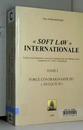 Piotr Dmochowski - Soft Law Internationale