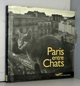 Paris entre chats